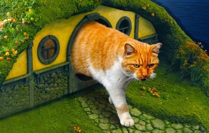 "Нора хоббита и башня Мордора: кошачьи принадлежности по мотивам ""Властелина Колец"""