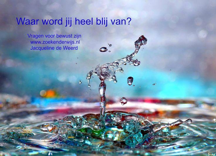 Waar word jij heel blij van? Vragen voor bewust zijn. www.zoekenderwijs.nl