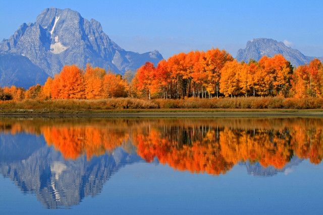 Fall Colors in Grand Teton Great collection of gorgeous ...