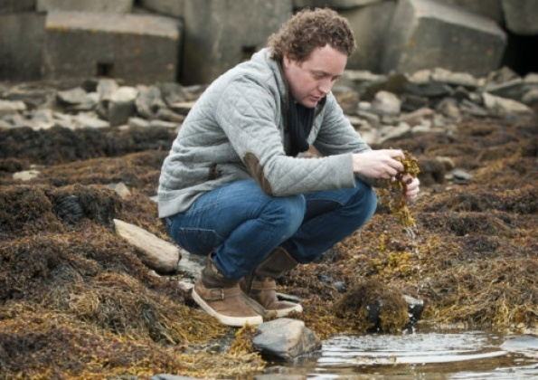 Tom Kitchin column 05-08-12  Seaweed - great tips and recipes     collecteding seaweed on Orkney beaches  Rockpool  Poached Turbot with saffron broth and seaweed