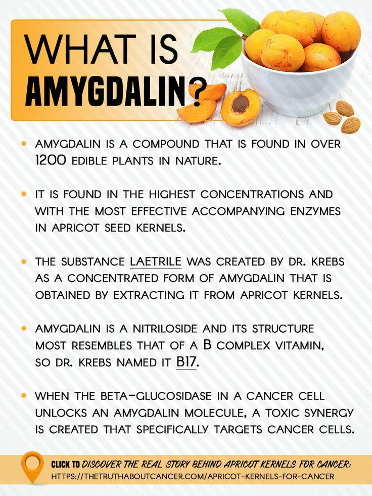 Have you ever heard of B15 or Laetril Therapy for Cancer? Do you know what Amygdalin is? Click on the image above to discover the real story behind Apricot Kernels for Cancer.