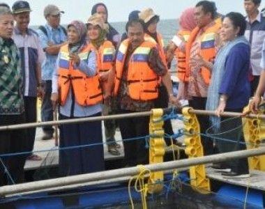 BBPBL Lampung: Kembangkan Potensi Perikanan dengan Teknologi Keramba Modern