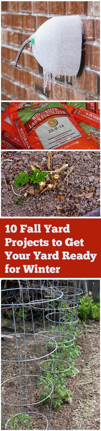 10 Fall Yard Projects to Get Your Yard Ready for Winter.. Aerate, Water, and Mow your lawn, Prune perennials and clean up annuals, Add fertilizer, Rake up leaves, clean up tools and plant supports and put them away for winter, protect your potted plants. click link for more information.