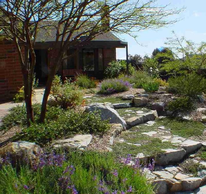 17 best images about backyard ideas on pinterest gardens for California native landscape design