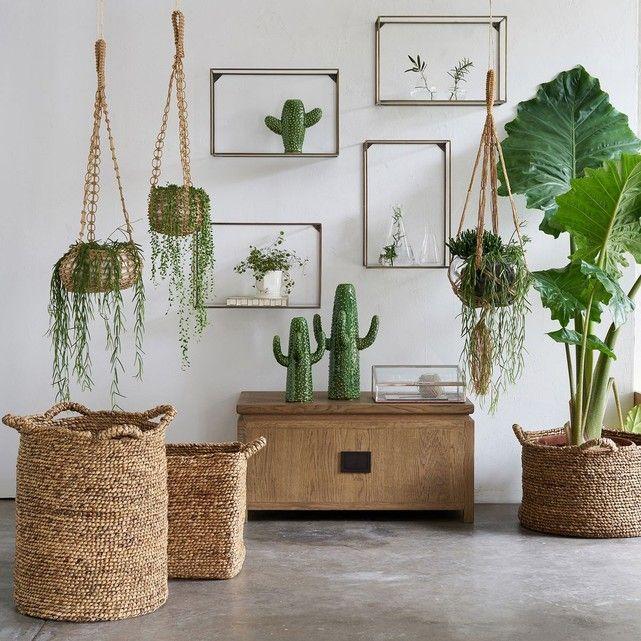 Les 54 meilleures images du tableau plantes d 39 int rieur for Accessoire plante interieur