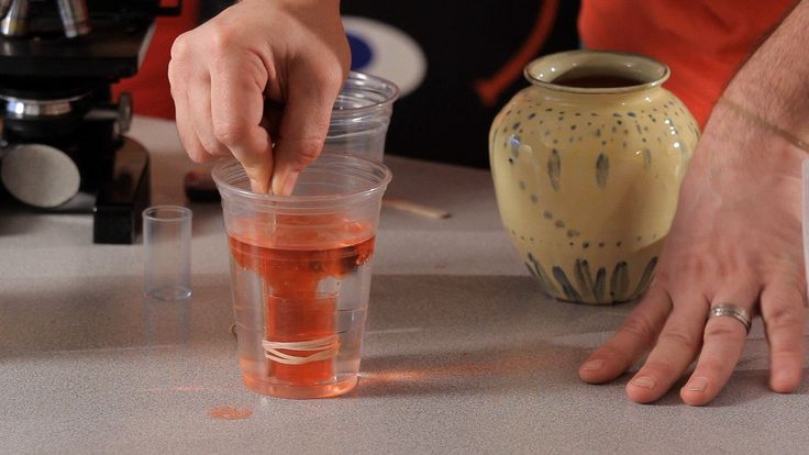 How to Make an Underwater Volcano | Science Projects