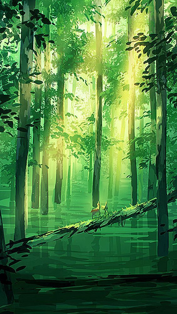 51 Enigmatic Forest Concept Art That Will Amaze You Looking for inspirations to … – cars
