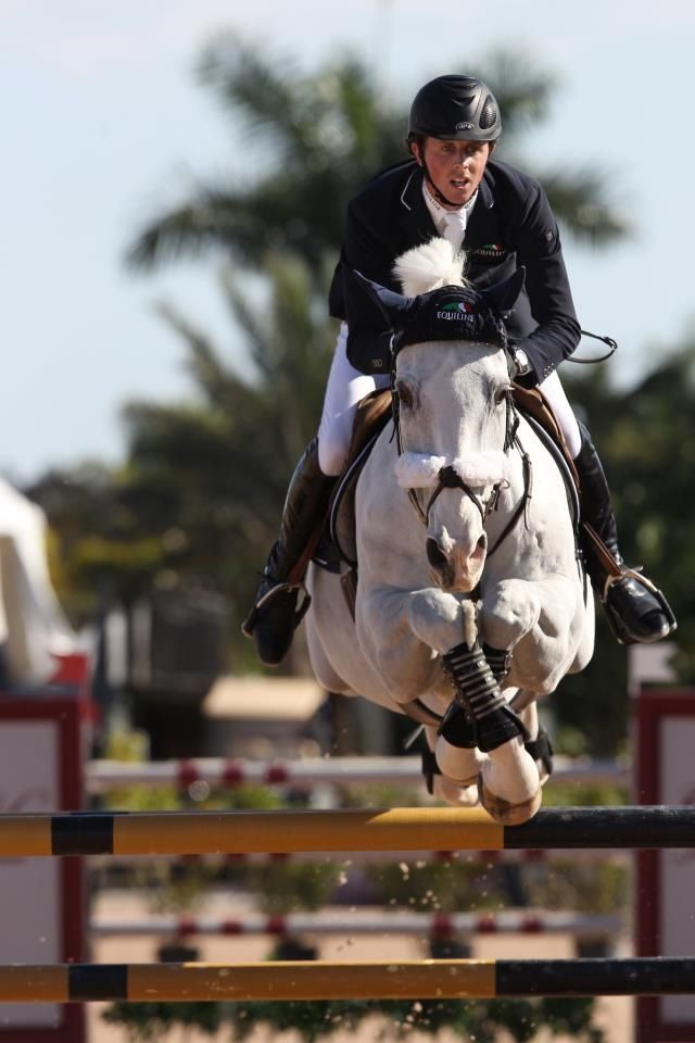 omg, I've never seen a horse cross his feet like this! haha this is the sweetest horse he is super cute and has the most unusual jumping style. Awsome in the stable and traveling. Vicont D owned by Jane Clark