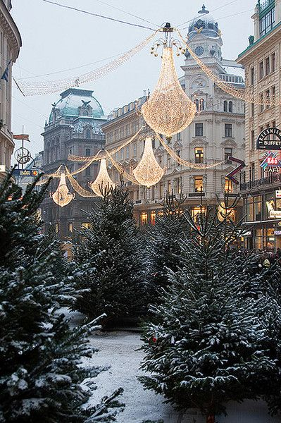 Vienna! Oh it's even more beautiful in the winter! Oh how I wish I went then! #travel #yourtravellist: