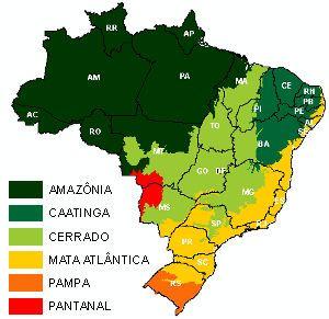 Resumo de Todos Biomas Brasileiros