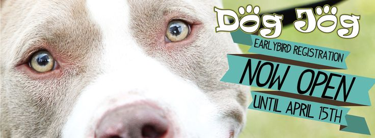 Facebook Cover - Calgary Humane Society