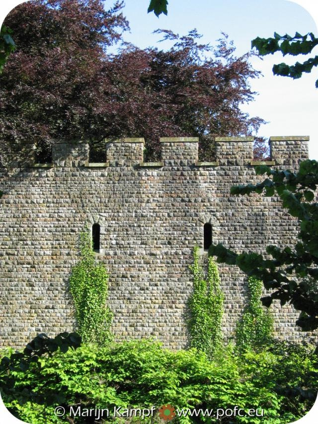 Castle wall with ivy and tree