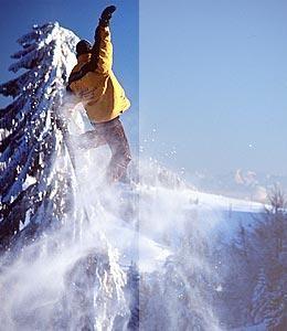 Snowboardkurs buchen auf ezebee...