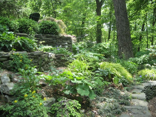 Landscaping Ideas For Shady Hillside : Woodland garden shade peace forward woodlands