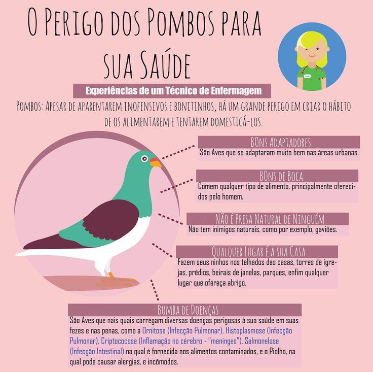 Os pombos são aves que vivem com facilidade nas cidades, morando em edificações onde costumam fazer seus ninhos em telhados, forros, caixas de ar condic... - Técnico de Enfermagem (T.E Intensivo) - Google+