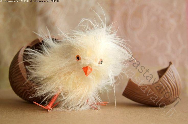 Työläs kuoriutuminen - tipu pääsiäistipu pääsiäinen suklaamuna olento hahmo mielikuvitus kuoriutua kuoriutuu väsynyt pääsiäismuna yllätys yllätysmuna untuvikko höyhenet