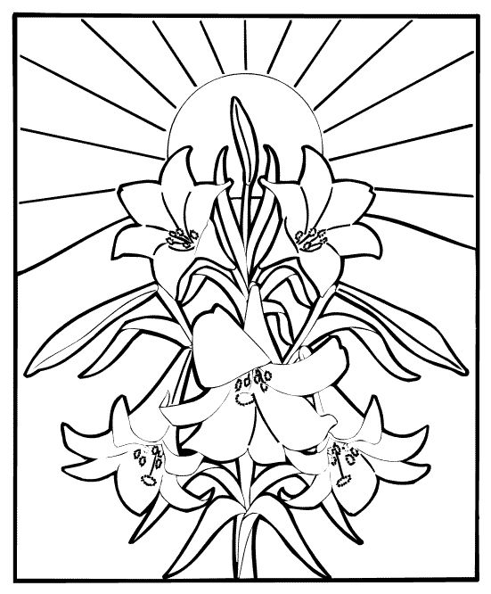 Lillies Are The Traditional Flower For Easter Season This Coloring Page Is A Good Craft Youngsters As They Listen To Story Of