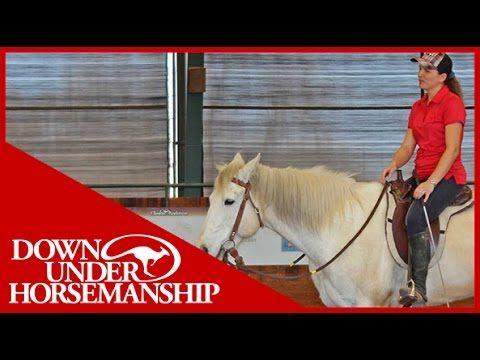 Clinton Anderson: Intermediate Testing, Riding Part 1 - Downunder Horsem...