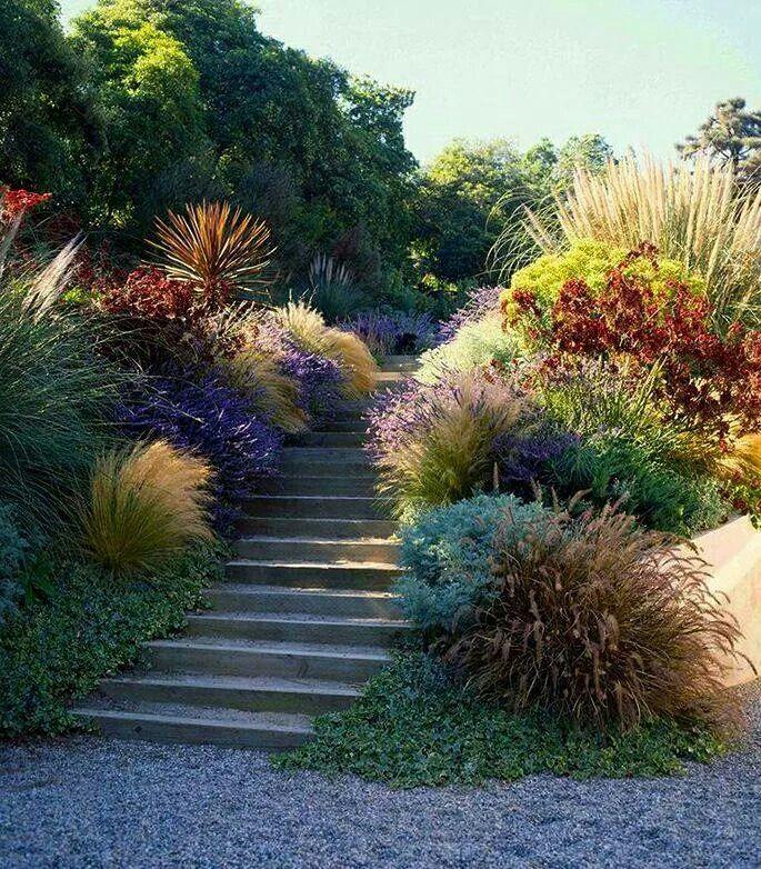 Magnifique jardin… …