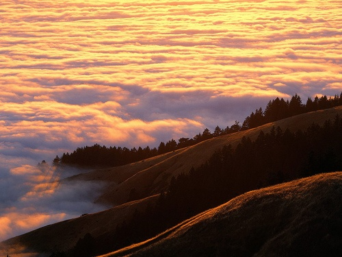 Coastal Fog and Mount Tamalpais at Sunset, Marin County, CaliforniaGod Creations, Marin County, Mount Tamalpais, Bays Area, States Parks, Favorite Places, California, Coastal Fog, Marines County