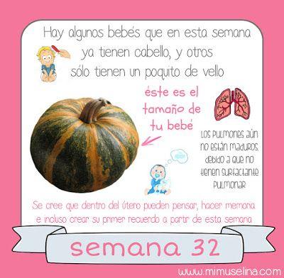 BebeBlog by mimuselina: Semana 32 embarazo. Tamaño y evolución del bebé @m...