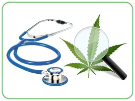 MJ Fact: 789 grams of 2,700-year-old #marijuana were found in a Chinese tomb in 2008.