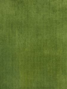 0205613 Outdoor Velvet Grass by Fabricut Fabric Outdoor Prints & Velvets Web Only 100% Polyester USA Xceeds 51,000 Double Rubs, Wyzenbeek Method H: -, V: - 58 inches - Fabric Carolina - Fabricut
