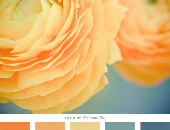 Love these colours together -- office colours, maybe? Darker teal-ish colour with pops of orange...