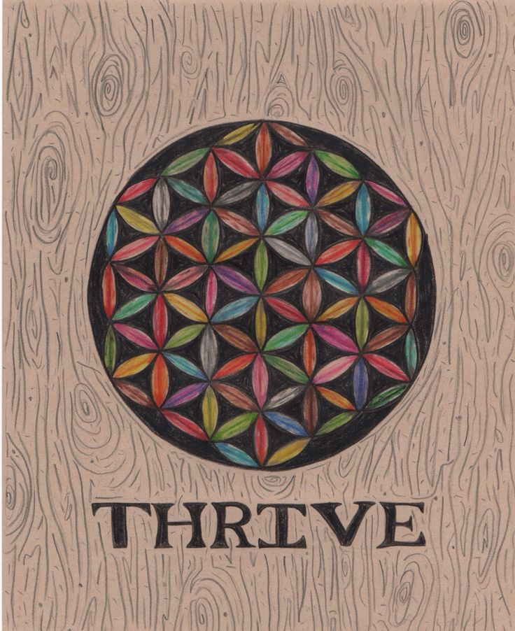 Inspired by the documentary #Thrive #Floweroflife #Lawofnature #Mandala www.thrivemovement.com
