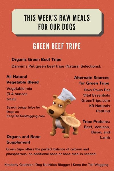 This Week's Raw Meals - Green Beef Tripe: Learn Where I Buy It, the Benefits of Green Tripe for Dogs, and This Week's Supplements