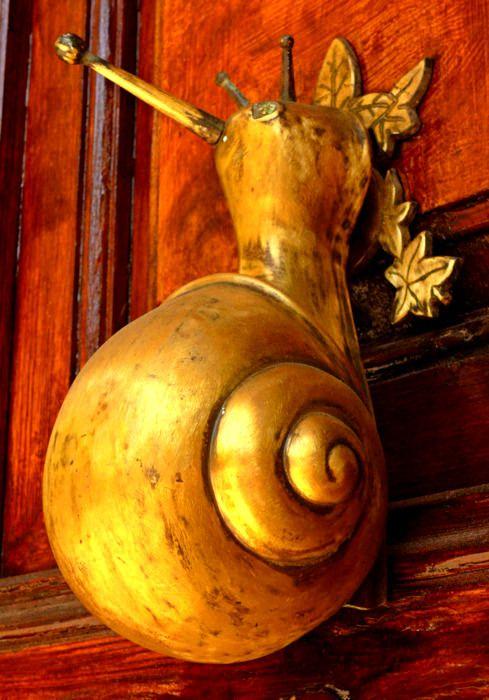 Snail Door Knocker @ TheDailyBasic #theconcessionrealestate #doorknocker #knockknock                                                                                                                                                      More