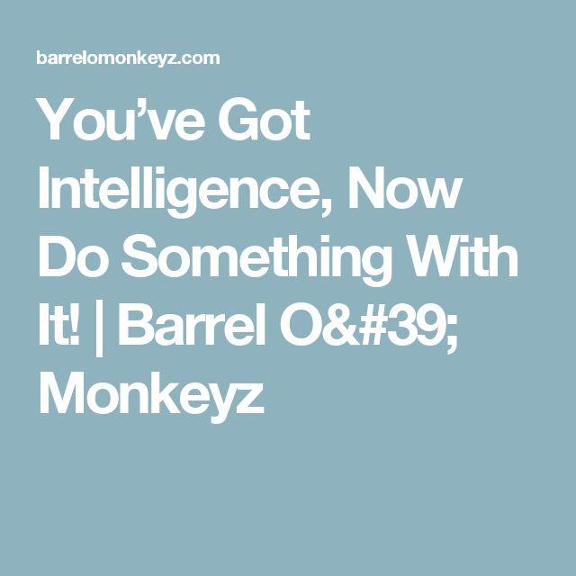 You've Got Intelligence, Now Do Something With It!   Barrel O' Monkeyz