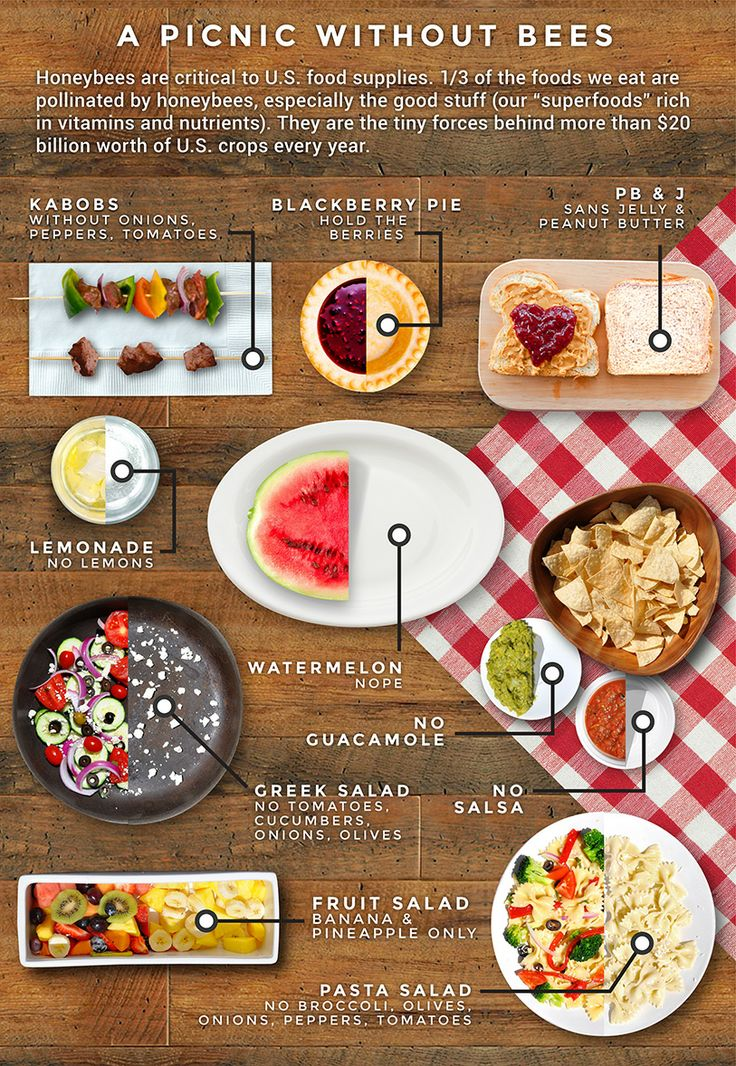 food we eat Protein can help you lose weight and keep your belly full but it's important to eat the right kind find out from the experts at webmd which proteins are healthiest.