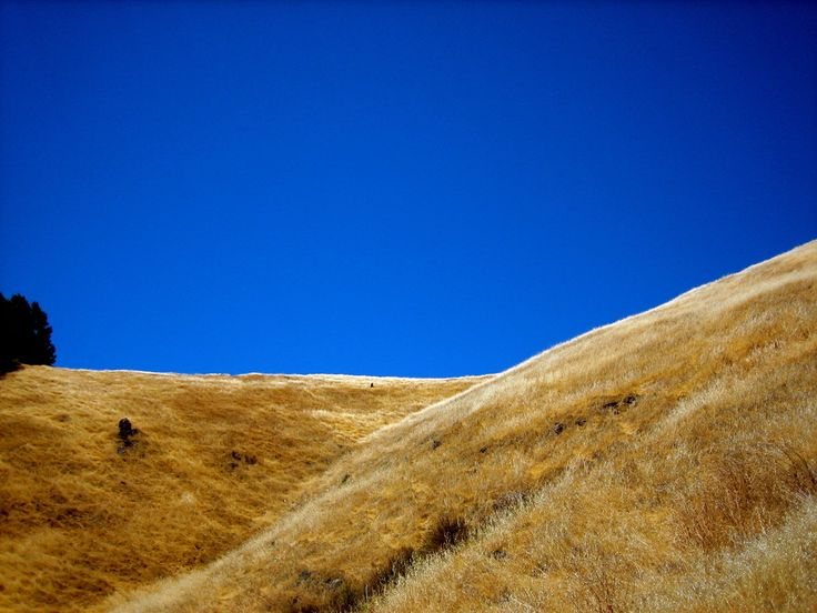 The top of the mountain. | 21 Reasons Marin County Is The Most Beautiful County