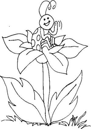 Insects coloring page 21