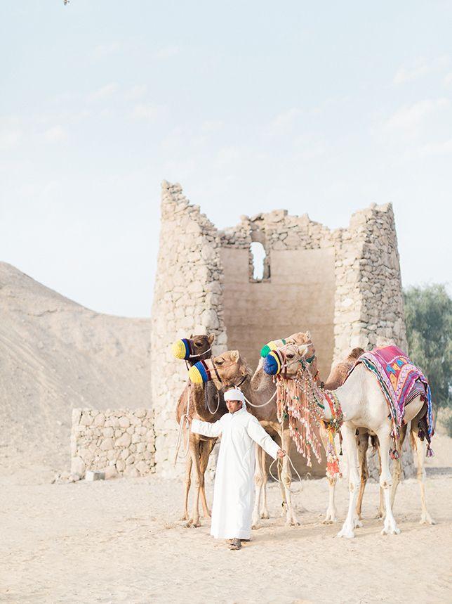 DUBAI   DESERT SHOOT 2 by Rensche Mari