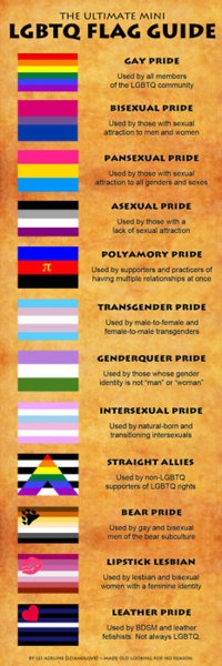 LGBTQ flag guide....everyones true colours!!! you don't have to be straight or gay - just be true x