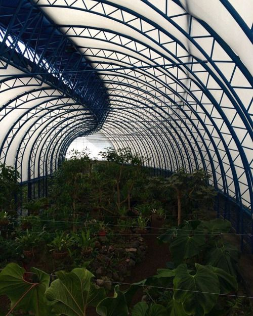 Overview of the orchid's beautiful greenhouse, inspired by the European greenhouses from early 20th century #Ecuador #Quito #Greenhouse #RTW #JulesVernex2
