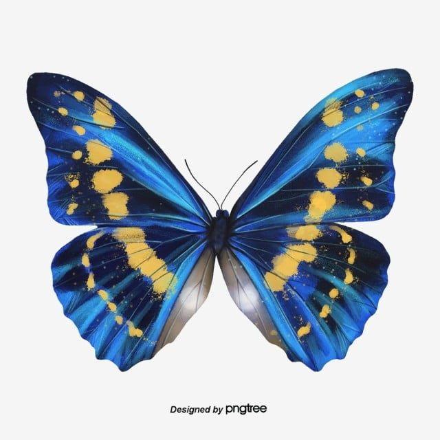 Borboleta Realista Borboleta Clipart Asas Pluma Imagem Png E Psd Para Download Gratuito Butterfly Clip Art Butterfly Art Print Cartoon Butterfly