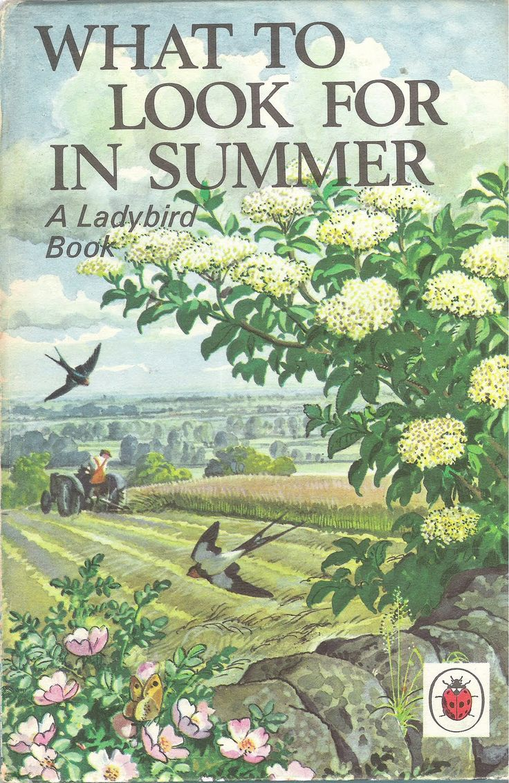 Ladybird book covers - Summer, wish I could look through this book-the illustrations were lovely