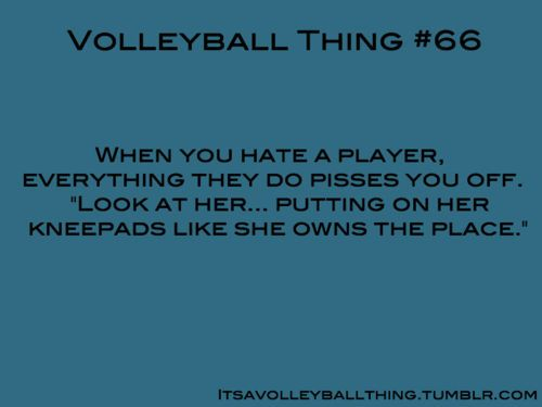 Its a Volleyball Thing #66. So. True.