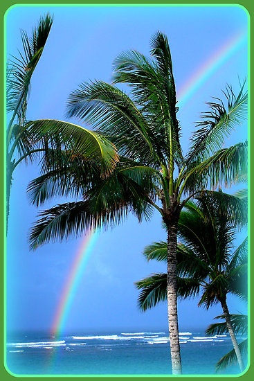 Hawaiian rainbow by suziesplace