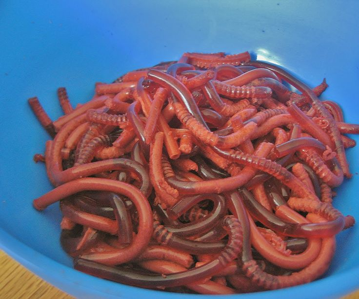 Create tasty, edible worms. This recipe is simple and great for Halloween, April Fool's, or anytime you feel like snacking on wormy goodness! If you can make...
