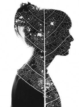 "Saatchi Online Artist Karl Davies; Photography, ""Silhouette & Photogram"" #art"