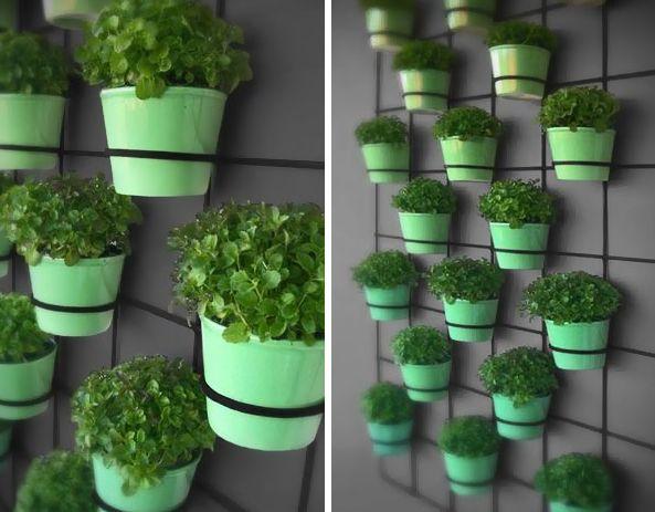 Small vertical garden - great idea for a small balcony or courtyard