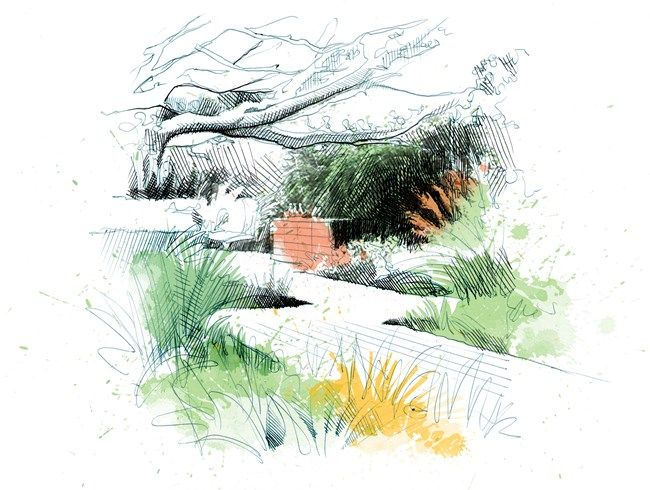 17 best images about garden design sketches on pinterest for Garden design sketches