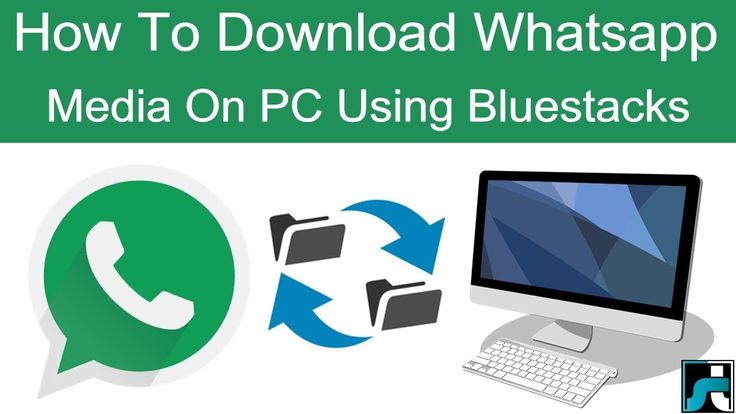 How To Download Whatsapp Images, Videos On PC (Using Bluestacks)