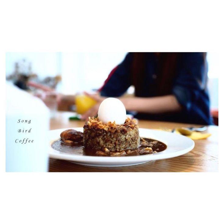 Instagram 上的 きょん。:「 . . song bird coffee 二条小屋さんあとのランチは行ってみたかったsong bird coffeeさん◎ 2階がカフェ、 3階にはお洒落な家具が置いてあります○ 想像はしてたけどやっぱり満席(´◡͐`) . 待つ間上に行ったりできるし待ったって感じもなくうろうろ出来ます○ song birdさんといえばこのカレー! 鳥の巣に守られた玉子○!! . シンプルといえばシンプルなんだけど、 この発想力がすげーです。 しかも見た目だけじゃなくて美味しいんですよこれがまたヽ(*^ω^*)ノ お店の落ち着いた雰囲気に食後の眠気はピーク。 椅子に座ってるのに、 どこかソファにいるようなのんびり感。 同じ場所にいるけどみんな別のことしてる空間が心地よかったり。 自由って。 いいなー。 #一人じゃ食べきれないから #シェアさせていただきました 」