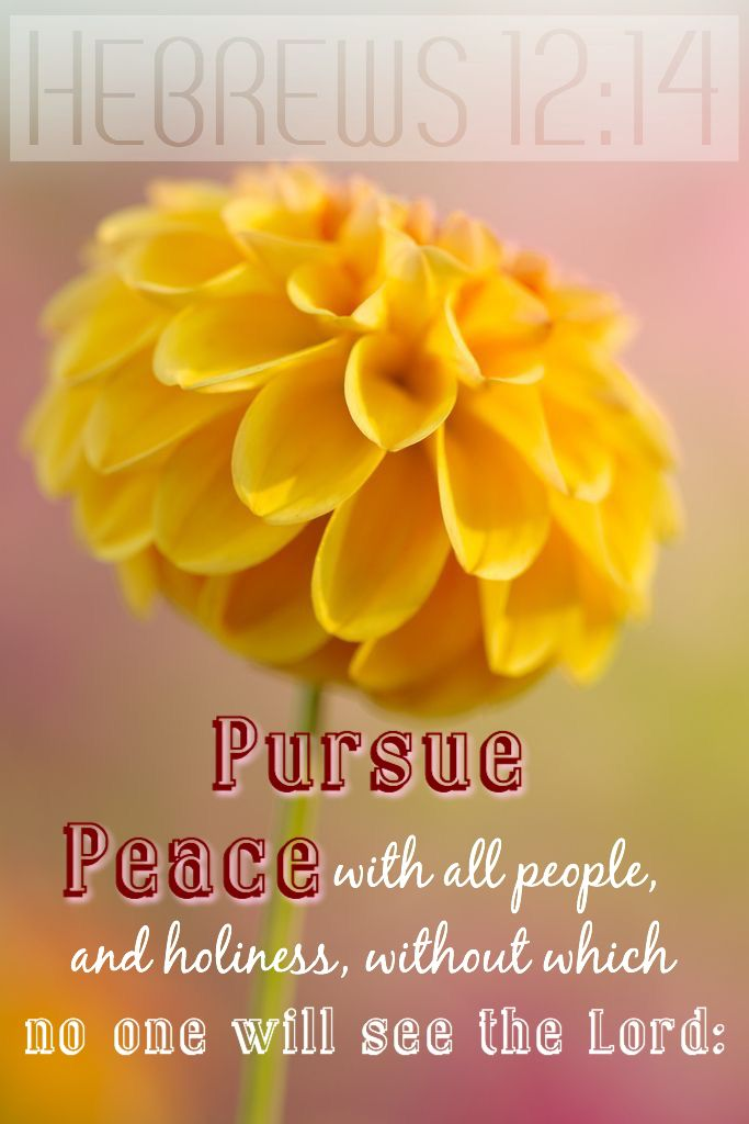 "Hebrews 12:14 ""Strive for peace with everyone, and for the holiness without which no one will see the Lord."""