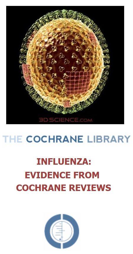 essay about h1n1 virus